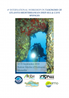 4th International Workshop on the Taxonomy of Atlanto-Mediterranean Deep-Sea and Cave Sponges